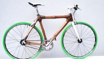 Bambooride